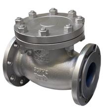 check-valve.jpg