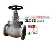 icon-globe-carbon.jpg